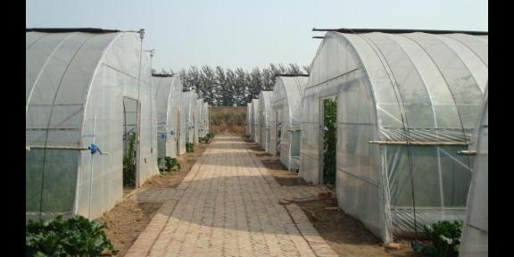 合肥新型温室 信息推荐「无锡农之航温室工程供应」