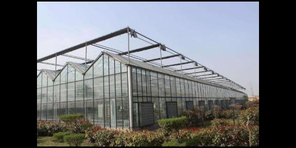 揚州智能連棟溫室