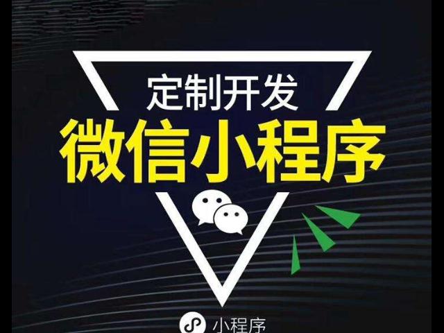 泰安手机软件定制开发公司 信息推荐「青岛创斯特科技供应」