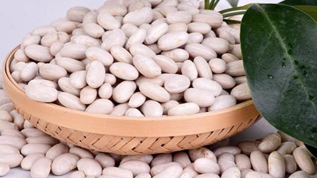 廣州輕悅知俏白蕓豆怎么吃能達到減脂的功效「湖南輕悅健康管理供應」