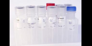 长沙成纤维细胞增殖的方法「上海儒安生物科技供应」