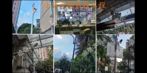 东莞莞城街道智能监控安装 欢迎咨询 东莞市瑞安网络工程供应