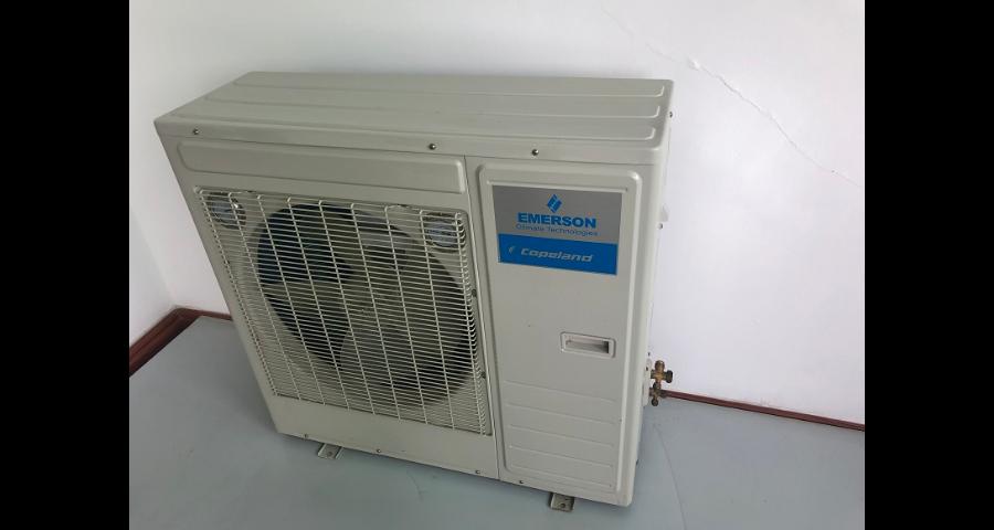 深圳室内飘雪机可以定制吗 客户至上 中山市三震制冷科技供应