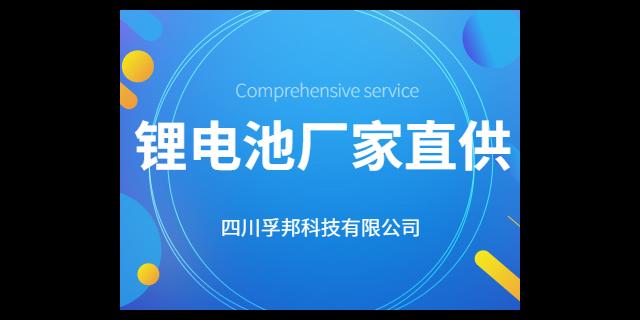 崇州CAN通讯锂电池