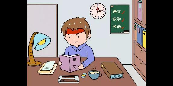 射洪市训练培训中心 服务至上「四川省乐园教育咨询供应」