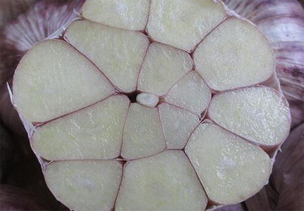 陕西供应大蒜质量推荐,大蒜