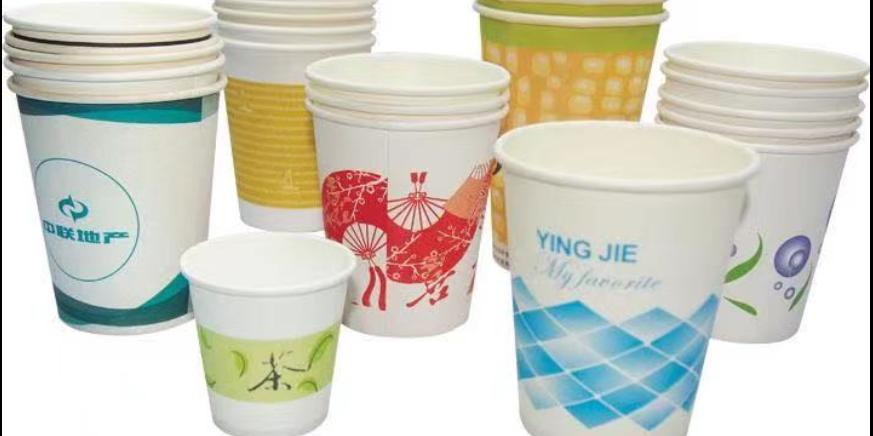济南标准纸杯定制