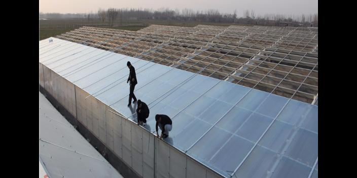 鋼城區醫院陽光板加工代理商 歡迎咨詢「山東魯碩塑膠科技供應」