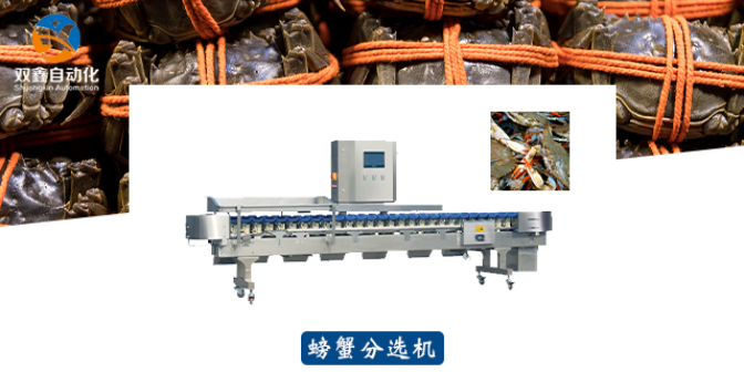 青岛分选机代加工厂 欢迎来电 莱州市双鑫自动化设备供应