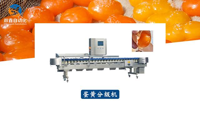 安徽蛋黄分级机价格 诚信经营 莱州市双鑫自动化设备供应