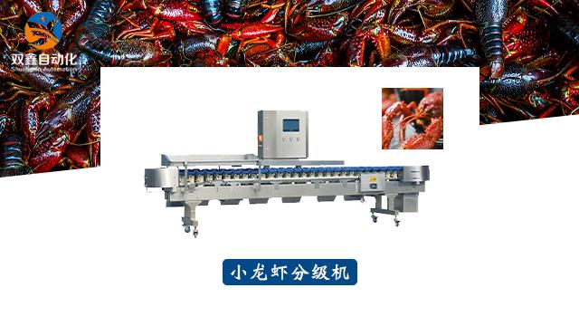 福建食品重量分级机价格 诚信经营 莱州市双鑫自动化设备供应