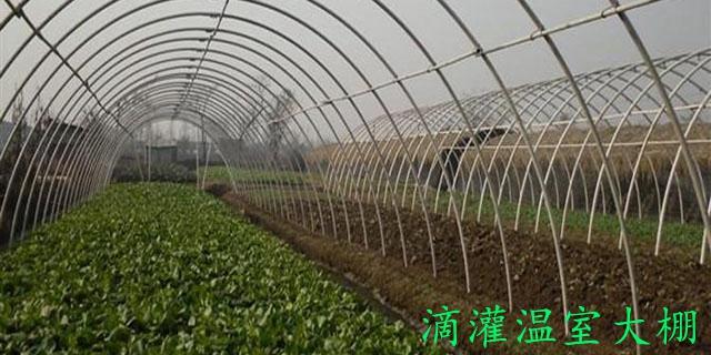 浙江養殖大棚建造 誠信經營「濰坊永煜農業科技供應」