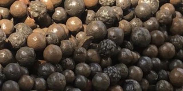 福建陶粒厂家 上海森卡环保科技供应