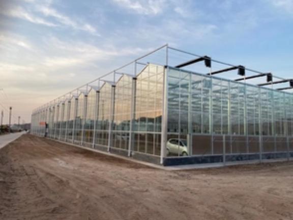 小型玻璃溫室工程