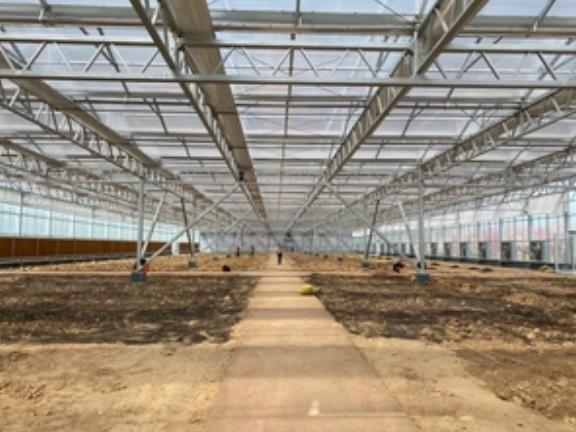 連棟玻璃溫室采摘園