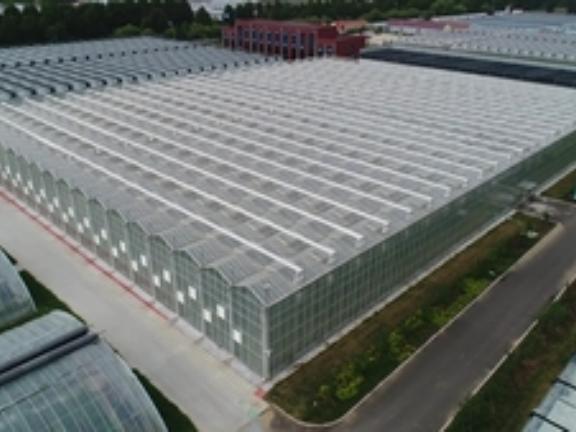 育苗玻璃溫室工程,玻璃溫室