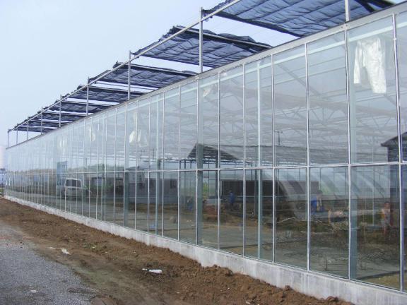 高智能连栋温室建设