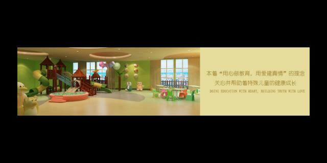 奉贤区感统课程 真诚推荐「百音供」