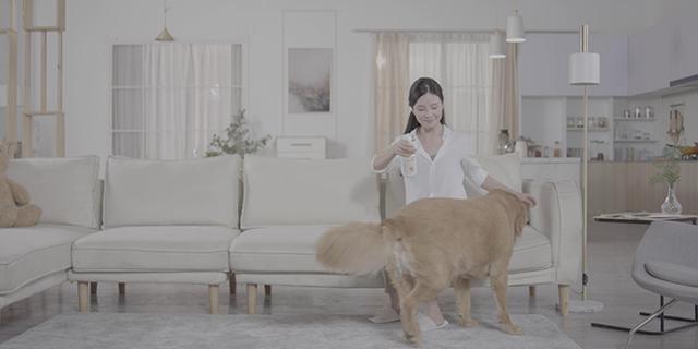 狗窝宠物消臭除菌液哪家好 上海日洁环境科技供应