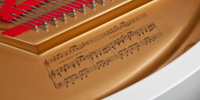 东阳音乐考级哪家便宜 欢迎咨询「金华市山叶乐器供应」