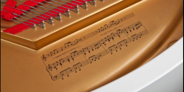 金华哪个地方学声乐 推荐咨询「金华市山叶乐器供应」