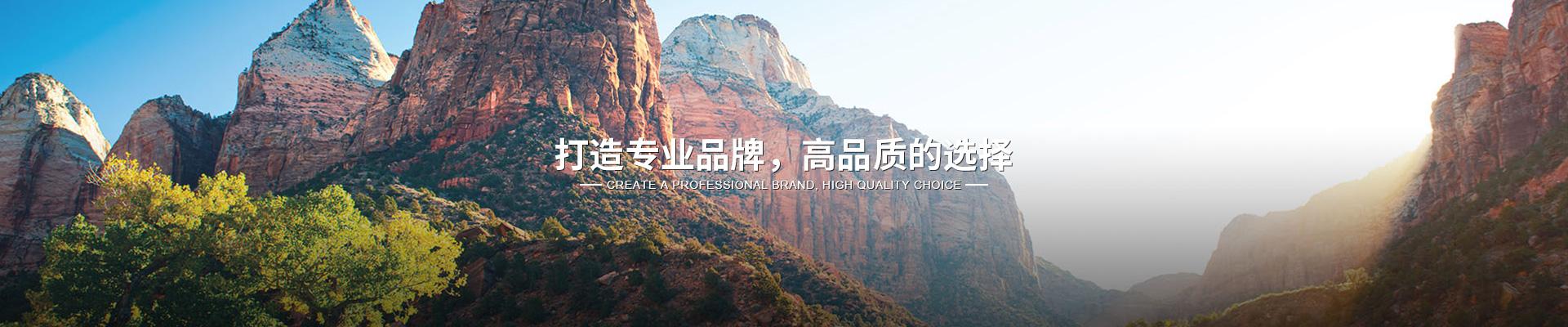 上海未来网络运行维护推荐咨询
