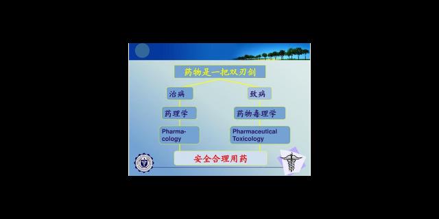 天津手性柱 有口皆碑 上海朝瑞生物科技供应