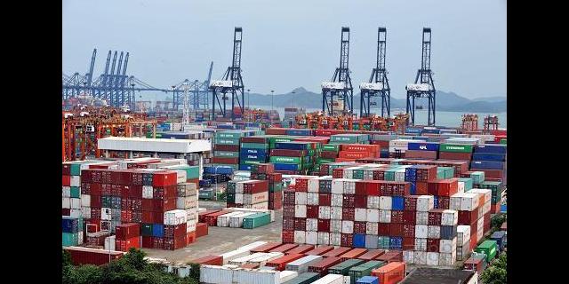 杨浦区进口进出口代理技术指导