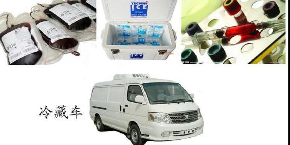徐汇区动物标本运输温度「上海丰鸟冷链物流供应」
