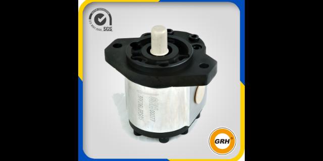 高速液壓齒輪泵壓力 鑄造輝煌「國瑞供」