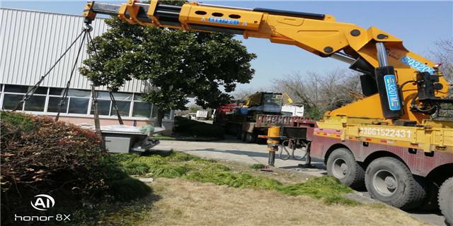 嘉兴高质量吊装公司 上海国祥装卸搬运供应
