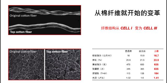 丽水液氨丝光棉销售厂家 上海徽焰纺织科技供应