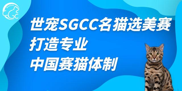 江苏世宠名猫选美赛怎么报名「上海世宠网络科技供应」