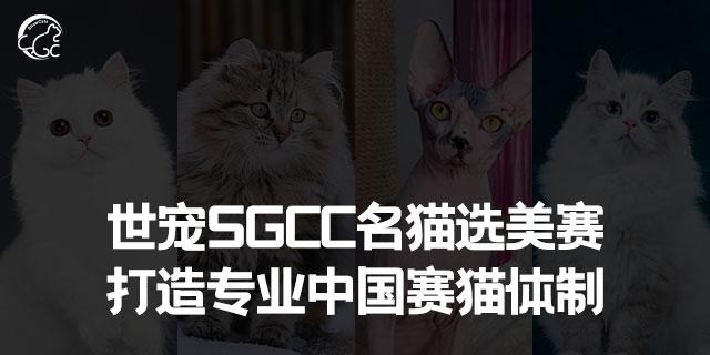 浙江貓賽證書「上海世寵網絡科技供應」