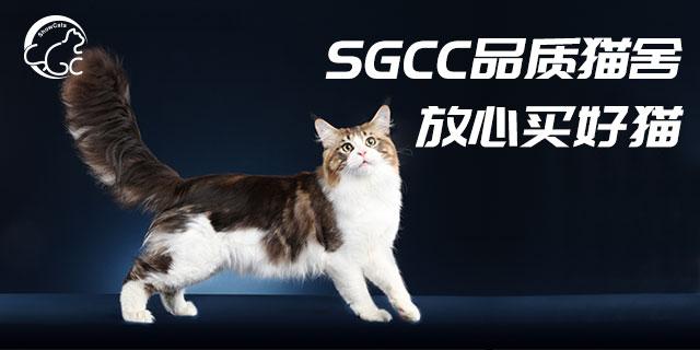 河南世寵SGCC裁判「上海世寵網絡科技供應」