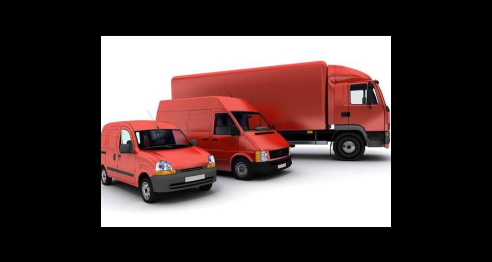 廣西跨境電商貨物分揀公司有哪些 誠信服務 海南省世裕國際貨運代理供應
