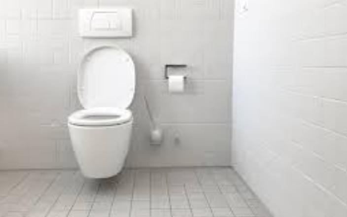 绍兴瓷砖厕所清洁剂哪个品牌好用 消字号认证 上海佳蒙实业供应