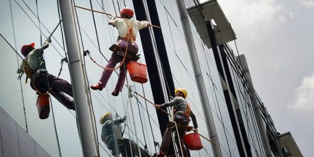 金山区企业单位外墙清洗专业服务 服务为先「 上海旌旭环境科技供应」