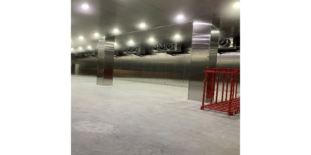 小型速冻库专业安装 服务至上 上海金惜制冷设备供应