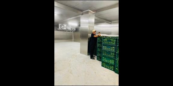 罗田县仓储冷链商用冷库设计 诚信为本 上海金惜制冷设备供应
