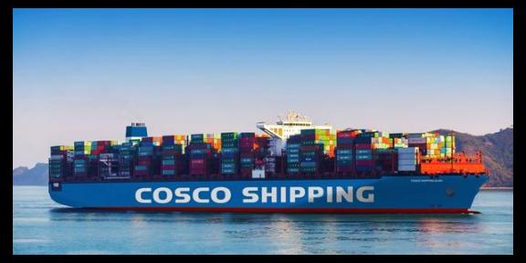 四川开顶柜进口 服务至上 上海卡斯柏国际物流供应