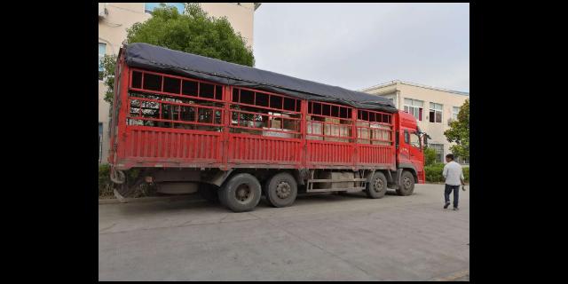 沈阳大件物流运输多少钱「上海蹑风物流供应」