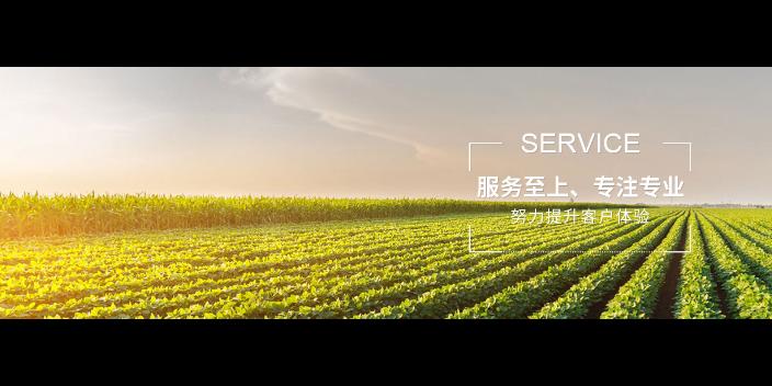 徐汇区服务食用农产品措施