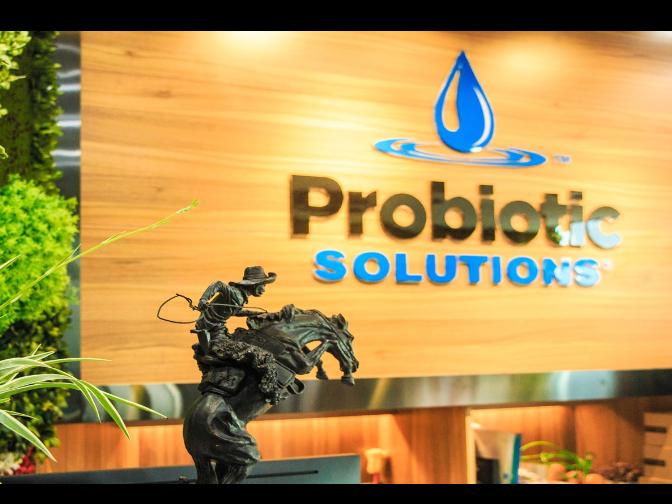 甘肃污水除臭液总氮 贴心服务 普罗生物技术供应