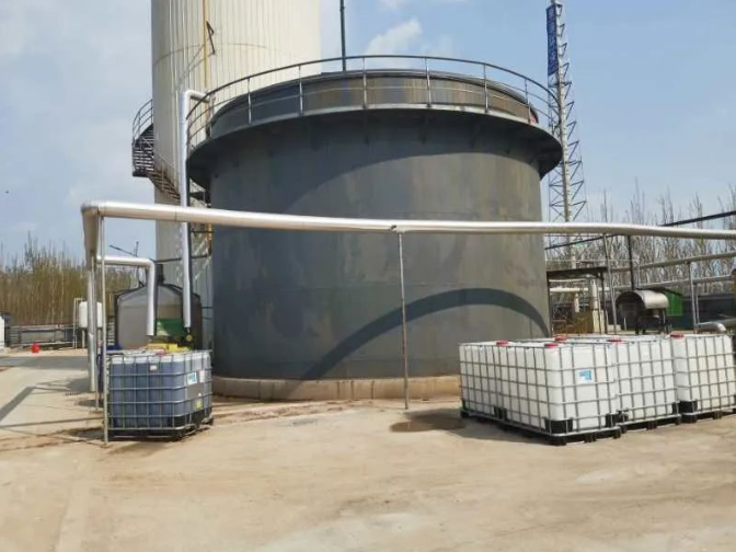 陕西除油菌总氮 客户至上 普罗生物技术供应