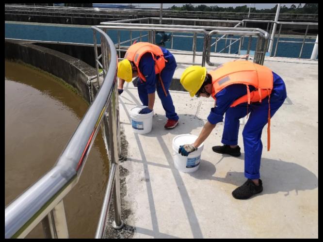 广东污水处理哪家好 诚信为本 普罗生物技术供应