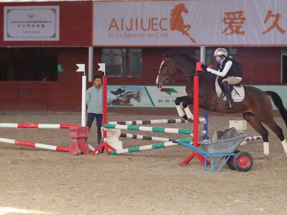 唐龍路花樣騎馬體驗 歡迎咨詢「愛久馬術運動俱樂部供應」