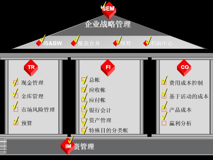 舟山专业SAPS4 cloud