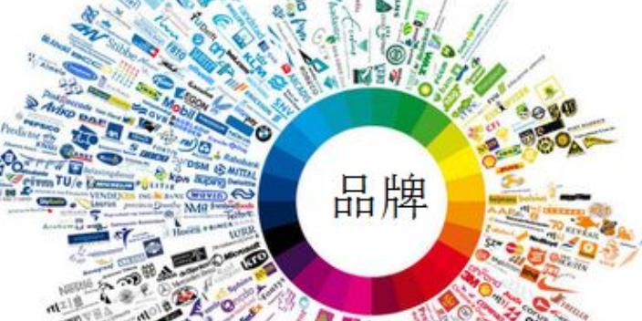 连云港企业营销策划客服