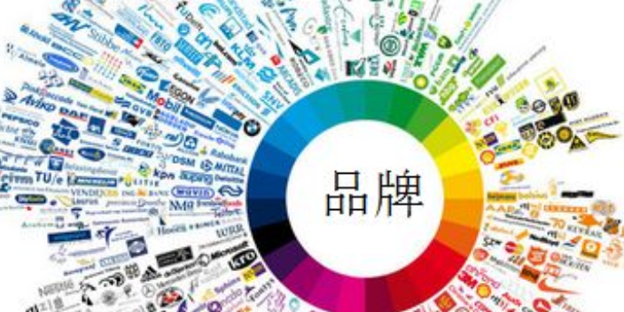 杨浦区专业营销策划客服